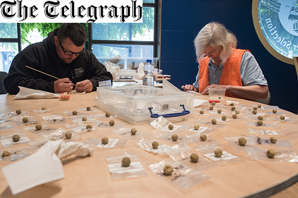 Soldier archaeologists unearth musket balls and amputated leg bones at Battle of Waterloo field hospital site